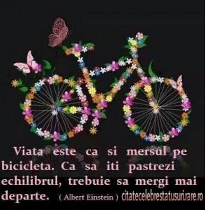 viata este ca si mersul pe bicicleta.Ca sa iti pastrezi